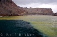 The colorful shades of green and yellow water surrounding Crater Bay where the tour boats anchor while visiting White Island on the North Island of New Zealand.