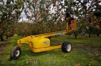 A commercial apricot picker starts his day with his helpful machine and makes his way through the orchard near Roxburgh in Central Otago, New Zealand picking all the ripe fruit.