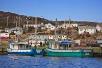 Shrimp, crab, and lobster boats are often tied up in the St Anthony Harbour, right outside residential homes.