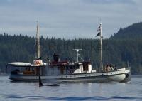 A whale watching boat takes passengers on tours in the North of Vancouver Island, a popular tourist and vacation destination.