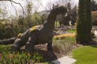 The dinosaur plant sculpture is one of the features of the Cullen Gardens and Miniature Village in Whitby, Canada.