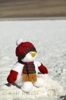A christmas snowman in the desert is an interesting concept in Death Valley National Park in California, USA.