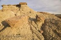 There are many  interesting landscapes and formations to see in Dinosaur Provincial Park in Alberta, Canada.