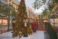 For an unforgetable christmas shopping experience, visit the West Edmonton Mall in Alberta, Canada.