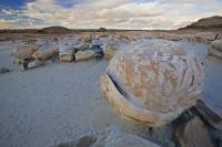Also known as the Hatchery, the Egg Garden is a fascinating assembly of rock formations found in the Bisti Wilderness Area in New Mexico.