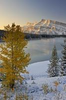 In the Rocky Mountains, an early winter snowfall melds with fall colours on the trees in a beautiful calm scene.