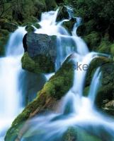 Waterfall Photo fresh green moss