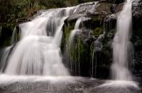 Boyd Creek Falls Fiordland Waterfall NZ