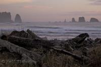 A photo of First Beach situated in La Push along the West Coast of the Olympic Peninsula in Washington, USA.