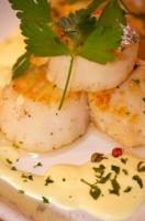 Stock image of fresh prepared Scallops with Hollandaise sauce.
