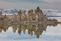 A dense grouping of rock formations also known as tufa towers with a beautiful backdrop of the snow covered Sierra Nevada mountain range.