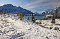 Swept by the wind, the first snowfall of winter creates a beautiful, fresh contrast against the landscape in Waterton Lakes National Park.