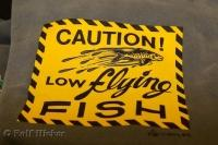 Low Flying Fish Funny Sign