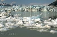 The large jagged shards of ice on the Lowell Glacier as it moves towards Lowell Lake in the Yukon Territory, Canada.