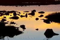 Golden Pond Sunset Southern Labrador Canada