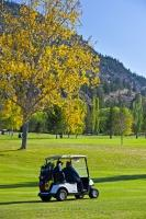 Golf Cart Okanagan Fall Scenery