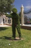 A statue of a golfer created out of clipped shrubs in full swing at the Oliva Nova Golf Course in Valencia, Spain in Europe.