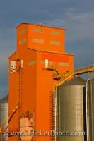 A grain elevator in the town of Morse in Saskatchewan, Canada. These are buildings for the storage and / or shipment of grain. These are a common sight in Saskatchewan, Canada, where grain is a major export and money-maker.