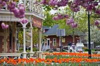 Spring has arrived in the town of Niagara-on-the-Lake in Ontario, Canada and flowers blossom outside the historic Prince of Wales Hotel.