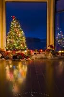 At night, a brightly lit Christmas tree with colourful decorations stands in a window of a home in British Columbia heralding to the world that it's holiday season.