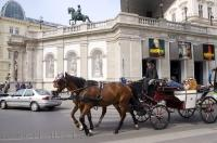 Being driven around the downtown area of Vienna, Austria in horse buggys with your own personalized coachman is the only way to travel.