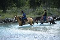 Horseback riding in the Blaeberry Valley in Golden, British Columbia in Canada is a great way to enjoy the natural surroundings this valley has to offer.