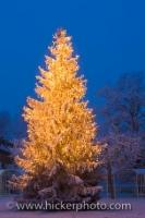 A beautifully illuminated Christmas tree adorns the grounds of the Landratsamt in Neustift, Freising in Bavaria, Germany during a cold winter day after snowfall.