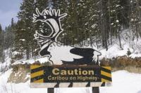 Funny Signs Caribou Crossing