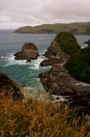 Jacks Bay Coastline Otago New Zealand