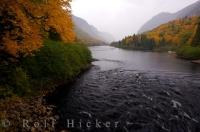Jacques Cartier River Autumn Forest Quebec