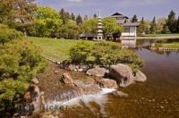 Located in the heart of Lethbridge is this beautiful Japanese Garden, near Henderson Lake.