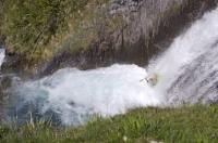 Kayakers Paradise Sauth Deth Pish Catalonia