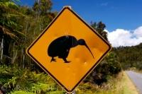 This road sign alerts drivers on the Forks-Okariko road on the West Coast of the South Island of NZ to keep their eyes open for any crossing kiwi.