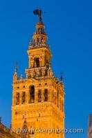 The famous La Giralda, the bell tower and minaret, of the Cathedral of Sevilla, is lit up at dusk as it towers above the city. This view is from the Plaza del Triunfo in the Santa Cruz District in Sevilla, Andalusia, Spain.