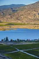 Around Lake Osoyoos the landscape is lush and green on one side and mountainous and desert-like on the other side. Vineyards line Lake Osoyoos in the Okanagan-Similkameen Region of BC, and this is a popular area for tourists especially during the summer.