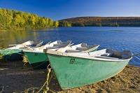 On the lakeshores of Lac de L'Assomption located in Mont Tremblant Provincial Park in Quebec, Canada, there are dinghys lined up which are available as rental boats.