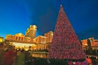 There are many packaged specials at Christmas that are available for families, singles and group vacations in Las Vegas, Nevada.