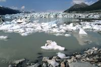 Small icebergs from the Glacier float in the mirky water of Lowell Lake in Kluane National Park in the Yukon Territory, Canada.