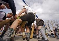 An action shot of the mean raising the Maibaum during the Maibaumfest in Putzbrunn, Germany.