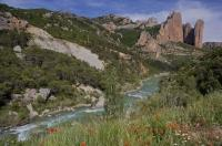 The Mallos de Riglos is a rock formation which overlooks the scenic Gallego River near Aguero, Aragon in Spain, Europe.
