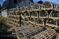 Lobster traps are lined up by the boat houses ready for a day of trapping in Malpeque in Prince Edward Island, Canada.