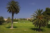 Manicured Golf Greens Oliva Nova Valencia Spain