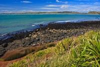 The rocky coastline of Manu Bay in Raglan on the North Island of New Zealand is very well known with the surfers of the area.