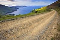Marlborough Sounds Gravel Road