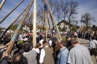 Locals gather around to watch as the May Tree is raised in the town of Putzbrunn, Germany.