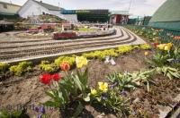 An interesting tourist attraction in the town of Nanton Alberta is the Big Sky Garden Railway, a miniature train model set in pretty gardens.