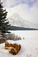Mount Chephren can be seen in the background behind Waterfowl Lake in this winter picture taken after fresh snowfall in Banff National Park, Alberta, Canada. Banff National Park is a UNESCO World Heritage Site in the Canadian Rocky Mountain Parks.