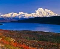 Mountain fall scenery with snow covered Mount McKinley, Wonder Lake and colorful autumn landscape in Denali National Park in Alaska, USA.