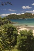 New Zealand Climate tourist information
