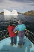 iceberg watching tour